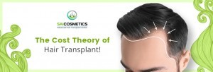 Theory Behind The Hair Transplant Cost